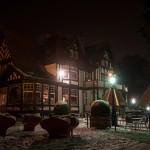 Jette-Laarbeek-sneeuw-14