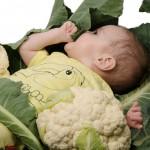 Bloemkolen - baby shoot-8046